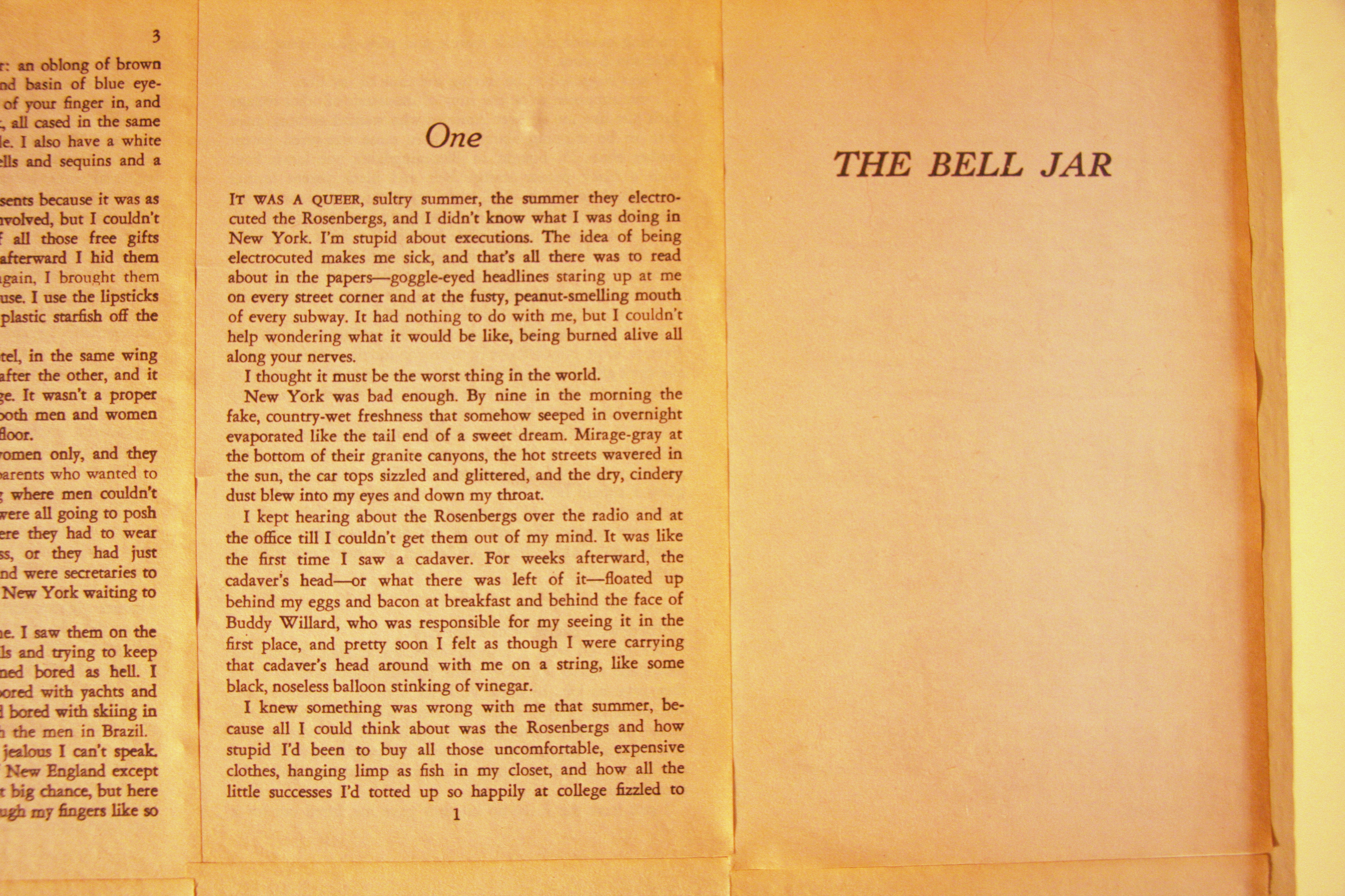 the bell jar essay the bell jar term paper essay on the bell jar